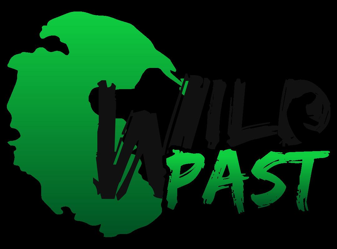 Wild Past Studio