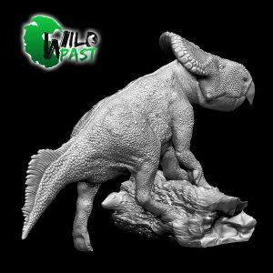 SW-003-Female-Protoceratops-3